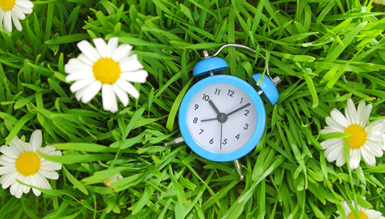 Blue clock on green grass with flowers background